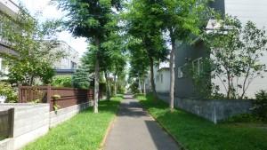 住宅街を通る散策路