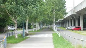 札幌桑園停車場緑道線