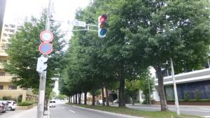 北3条通り
