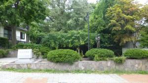 宮の森緑地