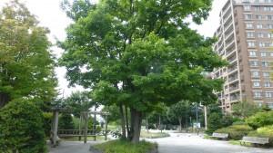 平岡東公園
