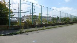 鴻城小学校