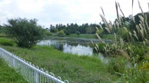トンネウス沼