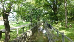 公園内の真駒内用水