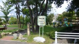 真駒内緑町公園
