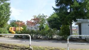 澄川ふれあい公園