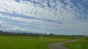 丘珠空港緑地(南東地区)