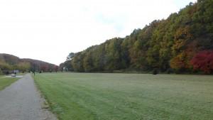 南側の芝生広場