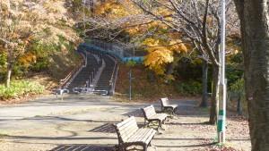 散策路の階段