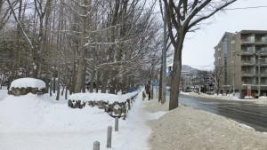 北1条宮の沢通公園口