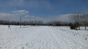雪の下のカナール