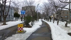 東札幌ふれあいの並木道