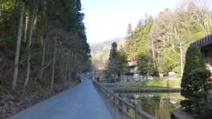 安楽寺 蓮池