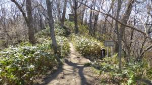 動物園裏登山口分岐点