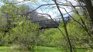 湿地から見る梅の香橋