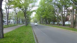 キャンパス道路