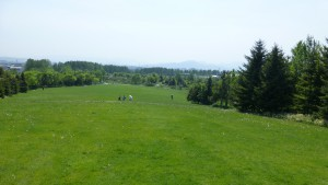ふるさとの丘