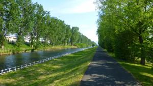 創成川とポプラ並木