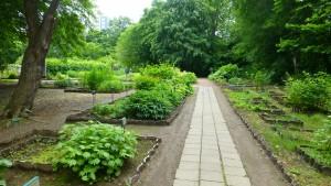 草本分科園