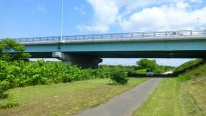 新川中央橋