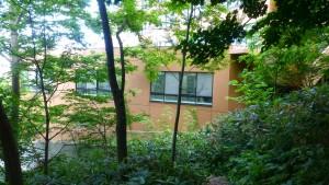 宮の森病院