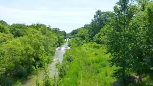 五輪小橋より真駒内川を望む