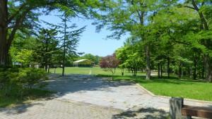藻南公園(芝生広場)