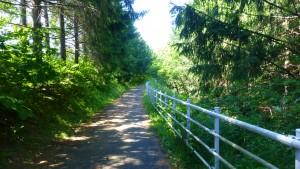 滝野上野幌自転車道
