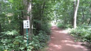 灌木園入口