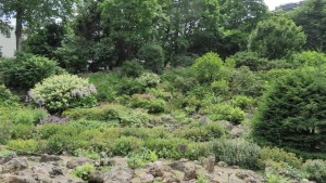 高山植物園