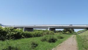 新川さくら並木橋
