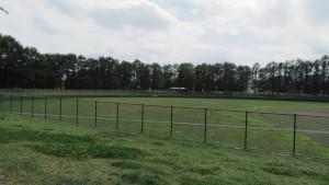 高台野球場