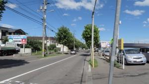 広島通とプラタナス並木