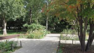 大学村の森(エントランス)
