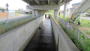 U字溝を流れる軽川(がるがわ)