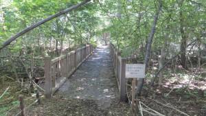 篠路五ノ戸の森緑地(木橋)