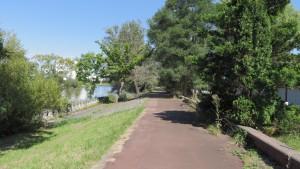 茨戸川沿いの散策路