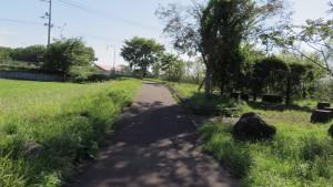 篠路川散策路終点