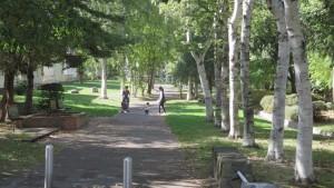 西野緑道入口