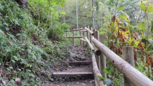 登山道2(階段)