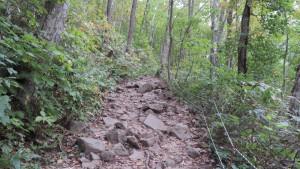 登山道4(岩露出)