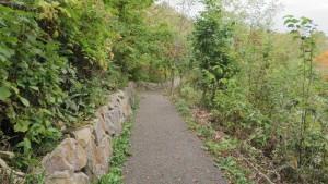 自然学習歩道 散策路