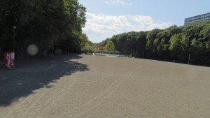 広場(青葉中央公園)
