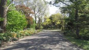 「世界の庭園」内の園路