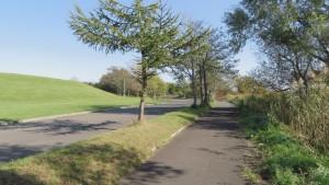 サイクリングロードと散策路