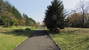 公園出入口を望む