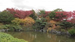 池(日本庭園)
