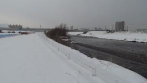 豊平川の流れ