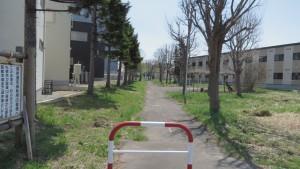 旧小沼川遊歩道