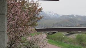 虎杖(いたどり)橋と手稲山